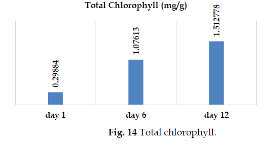 icontrolpollution-Total-chlorophyll