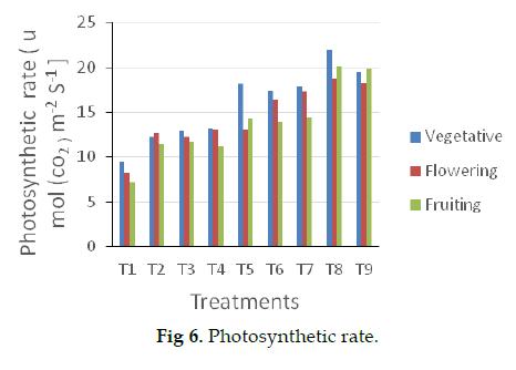 icontrolpollution-photosynthetic