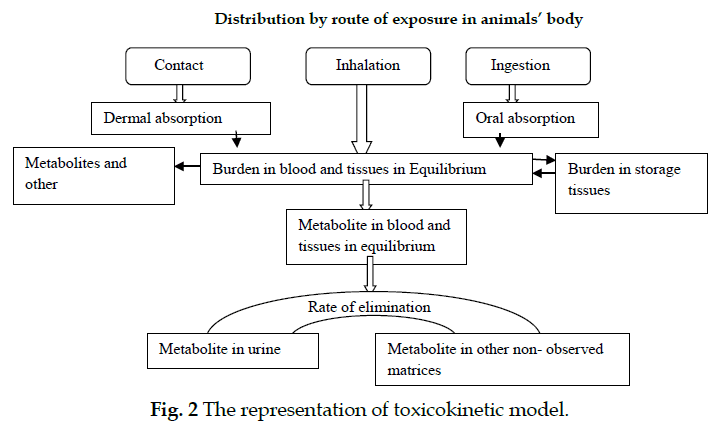icontrolpollution-representation-toxicokinetic-model