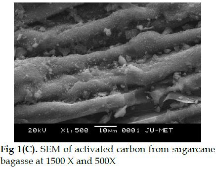 icontrolpollution-sugarcane-bagasse
