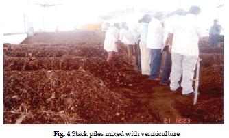 icontrolpollution-vermiculture
